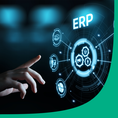 Features of an ERP